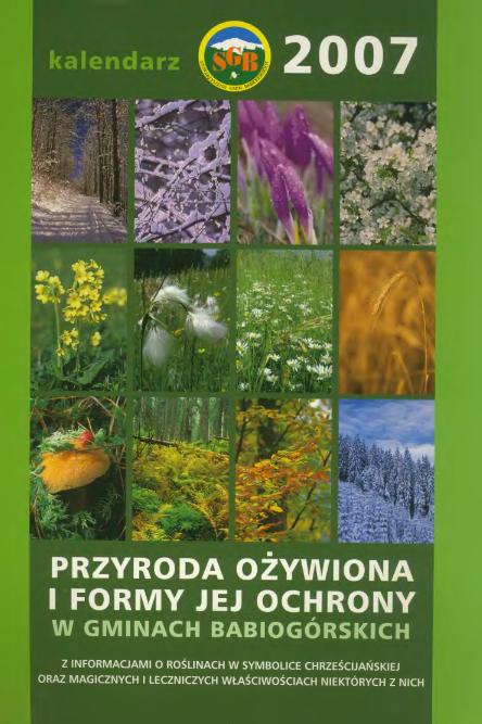 Kalendarz na rok 2007